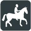 Paardensport tijdens de Olympische Spelen 2016