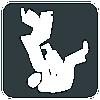Judo +100 kg Zwaargewicht Heren