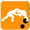 Worstelen -120 kg Freestyle Superzwaargewicht Heren
